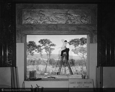 http://images.library.amnh.org/d/t/8x10/0002/00314206_l.jpg