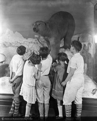 http://images.library.amnh.org/d/t/8x10/0002/00312176_l.jpg