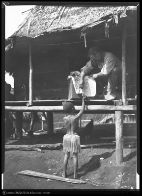 http://lbry-web-002.amnh.org/san/to_upload/Beck-PapuaNewGuinea/NG-5x7-negs/117458.jpg