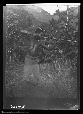 http://lbry-web-002.amnh.org/san/to_upload/Beck-PapuaNewGuinea/W-4x5-negs/273005.jpg