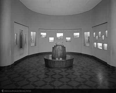 http://images.library.amnh.org/d/t/8x10/0002/00319605_l.jpg