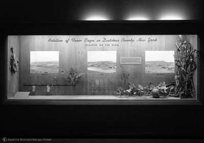 http://images.library.amnh.org/d/t/8x10/0002/00321884_l.jpg