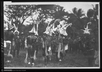 http://lbry-web-002.amnh.org/san/to_upload/Beck-PapuaNewGuinea/NG-5x7-negs/115665.jpg