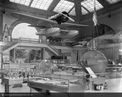 http://images.library.amnh.org/d/t/8x10/0001/00314604_l.jpg
