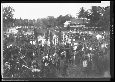 http://lbry-web-002.amnh.org/san/to_upload/Beck-PapuaNewGuinea/NG-5x7-negs/115666.jpg