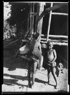 http://lbry-web-002.amnh.org/san/to_upload/Beck-PapuaNewGuinea/NG-5x7-negs/115593.jpg