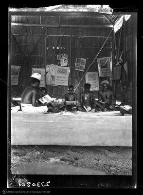 http://lbry-web-002.amnh.org/san/to_upload/Beck-PapuaNewGuinea/W-4x5-negs/273080.jpg