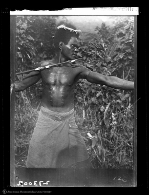 http://lbry-web-002.amnh.org/san/to_upload/Beck-PapuaNewGuinea/W-4x5-negs/273002.jpg