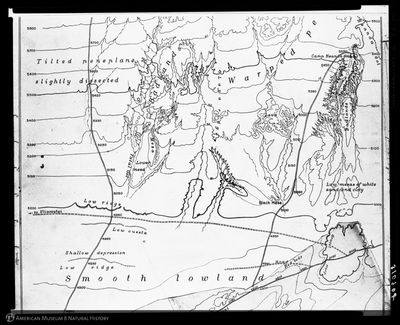 http://lbry-web-002.amnh.org/san/to_upload/asiaticexpedition/310908.jpg