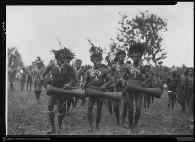 http://lbry-web-002.amnh.org/san/to_upload/Beck-PapuaNewGuinea/NG-5x7-negs/117446.jpg