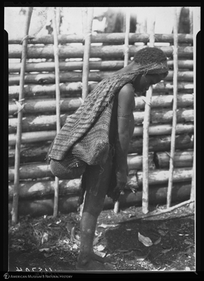 http://lbry-web-002.amnh.org/san/to_upload/Beck-PapuaNewGuinea/NG-5x7-negs/115704.jpg