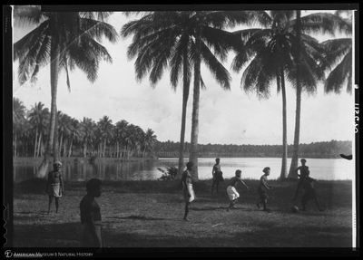 http://lbry-web-002.amnh.org/san/to_upload/Beck-PapuaNewGuinea/NG-5x7-negs/115670.jpg