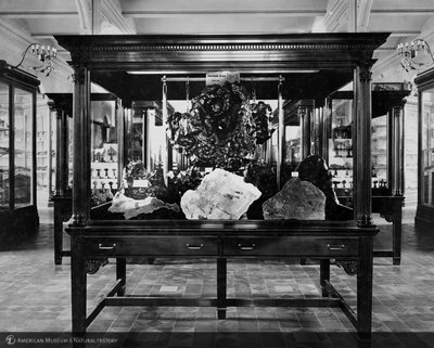 http://images.library.amnh.org/d/t/8x10/0002/00311212_l.jpg