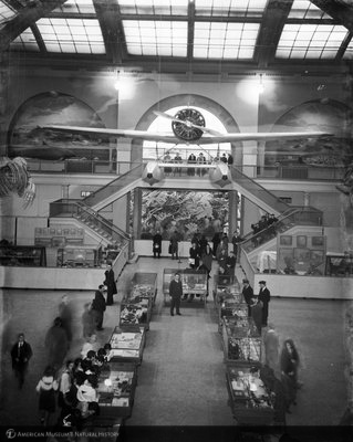 http://images.library.amnh.org/d/t/8x10/0002/00314346_l.jpg
