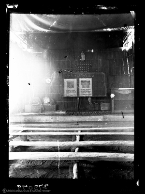 http://lbry-web-002.amnh.org/san/to_upload/Beck-PapuaNewGuinea/W-4x5-negs/273079.jpg