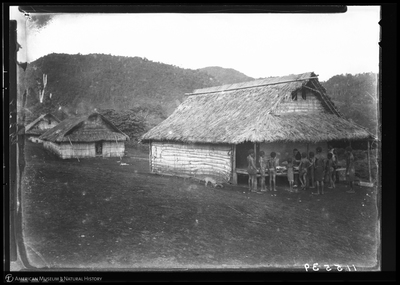 http://lbry-web-002.amnh.org/san/to_upload/Beck-PapuaNewGuinea/NG-5x7-negs/115539.jpg