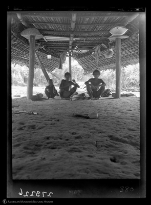 http://lbry-web-002.amnh.org/san/to_upload/Beck-PapuaNewGuinea/W-4x5-negs/273226.jpg