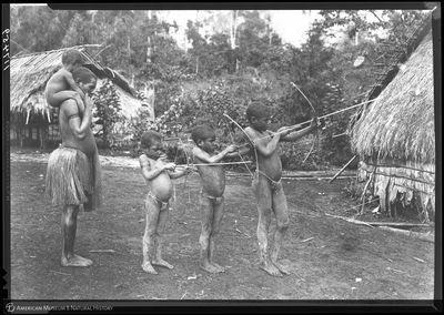 http://lbry-web-002.amnh.org/san/to_upload/Beck-PapuaNewGuinea/NG-5x7-negs/117459.jpg